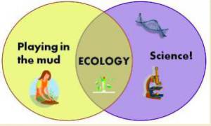 Ecology can be fun From girlsaregeek.wordpress.com